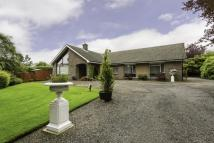 4 bed Bungalow in Latch Road, Brechin...