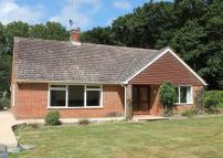 Detached Bungalow to rent in Shipley Road, RH13