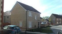 3 bed semi detached house in Hazel Gardens, Harwell...