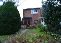 2 bed Terraced property to rent in Camborne Road