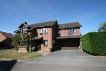 6 bed Detached property to rent in George Abbott Catchment...