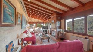 Living lounge + fire