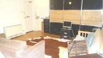 Surrey Road Studio flat