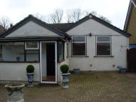 Detached Bungalow in Crow Lane, Rush Green...