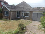 Detached Bungalow for sale in Ashurst Avenue, Saltdean...