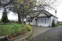 Detached Bungalow for sale in Riding Barn Hill, Wick...