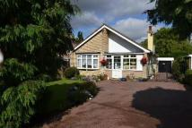 Detached Bungalow for sale in Latchingdon Road...