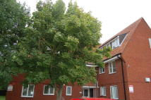 2 bed Ground Flat in LITTLECROFT...