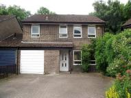 Detached house to rent in Boyatt Wood