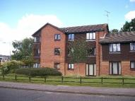 1 bed Flat to rent in Fair Oak