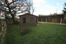 property to rent in Studio Unit, Rettendon Common, Chelmsford