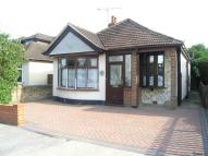 Detached Bungalow to rent in The Avenue, Hadleigh...