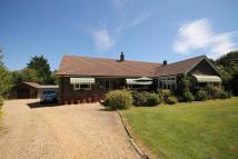 Detached Bungalow for sale in Cranmore, Isle of Wight