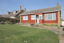 Detached Bungalow in BRIGHSTONE