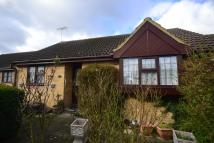 Semi-Detached Bungalow for sale in Cumberland Close...
