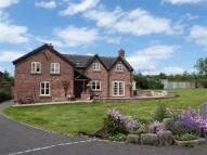 Detached house to rent in Tetton Lane, Moston...