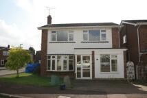 Seldon house to rent