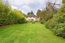 The Warren Detached house for sale