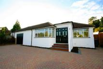 Detached Bungalow to rent in Links Drive, Radlett...