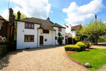 4 bed Detached house for sale in Beech Avenue, RADLETT...