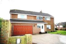 Paddock Detached property for sale