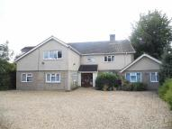 Detached home in Gayton Road, King's Lynn...