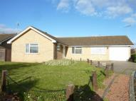 Detached Bungalow for sale in St Botolphs Close...