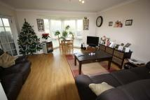 Ash Court Flat to rent