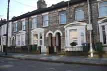 louise road  Ground Flat to rent