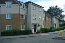 North Lodge Drive Flat to rent