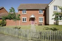 semi detached house to rent in Grebe Court, Costessey...