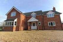 8 bed house in Dereham Road, Scarning...