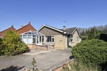 Detached Bungalow for sale in Stone Road, Toftwood...
