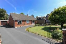 Bungalow for sale in Baxter Close, Hingham...