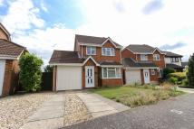 3 bed Detached home to rent in Hawthorn Drive, Scarning...