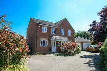 semi detached home to rent in Elise Way, Wymondham...