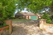 3 bed Detached house in Bittering Street...