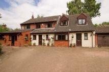 Detached house in Hall Drive, Honingham...