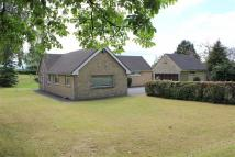 Detached Bungalow to rent in Stonesfield Lane...