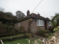 2 bed Detached Bungalow to rent in Westridge Road...