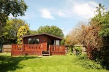 Detached Bungalow to rent in Laleham Reach, Chertsey...