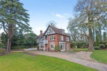 Detached property to rent in Woburn Hill, Addlestone...