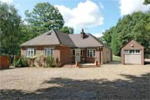 6 bed Detached property in Hardwick Lane, Lyne...