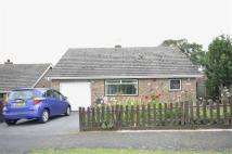 Detached Bungalow in Windmill Hill