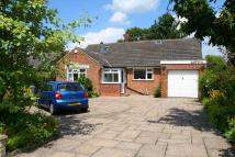 Detached property for sale in Ward Avenue, Bollington...