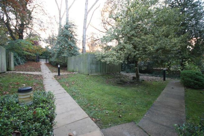16 Linfield - Garden
