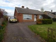 Detached Bungalow in Norwich Street, Hingham...