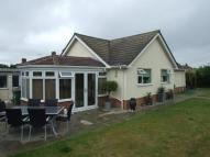 Bungalow to rent in Pople Street, WYMONDHAM