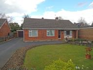 Detached Bungalow for sale in Baxter Close, Hingham...