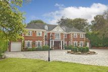 Detached property for sale in Billericay